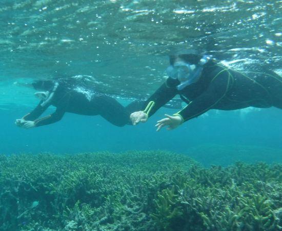 サンゴを楽しむN澤さんとK本さんです。