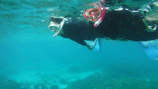 視界を広く保って、サンゴとお魚さん楽しんでいらっしゃいます。