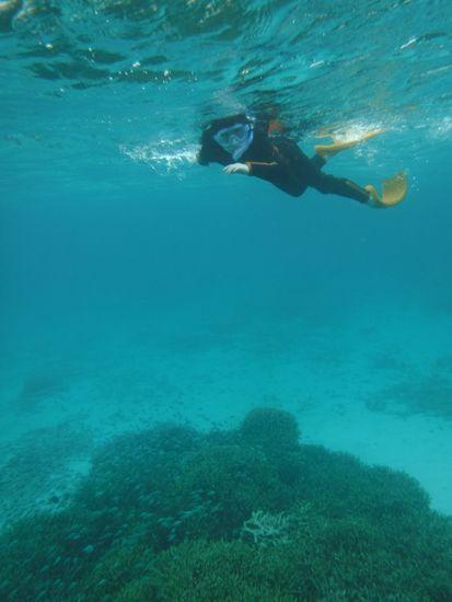 アイリちゃんは、広範囲に泳ぎまわっています