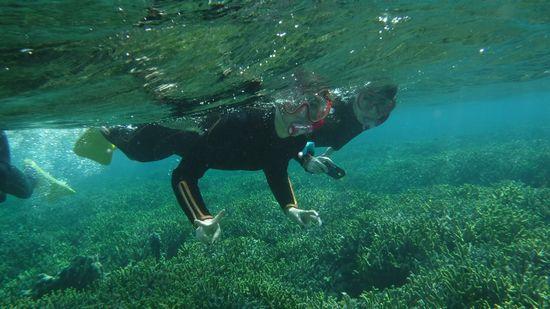 活発に泳いでいます!