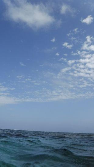 青空広がるよい天気です