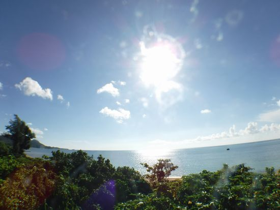 朝からぎらぎら太陽です