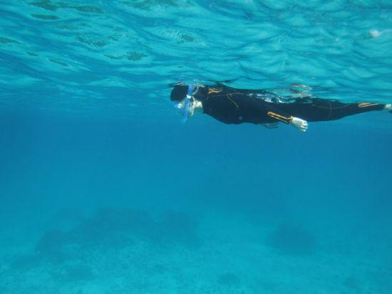 スムーズな泳ぎのN島さんです