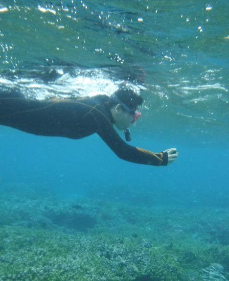 楽勝の泳ぎの奥さんです