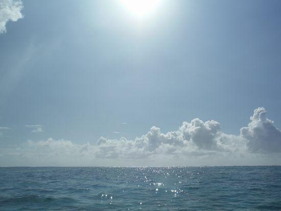 今日も快晴、海に観光日和です