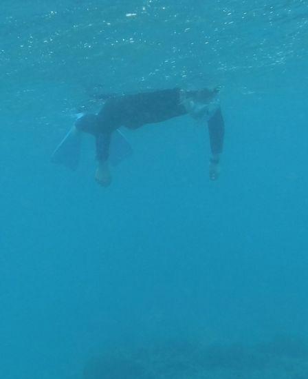 初めてですが、余裕の泳ぎです
