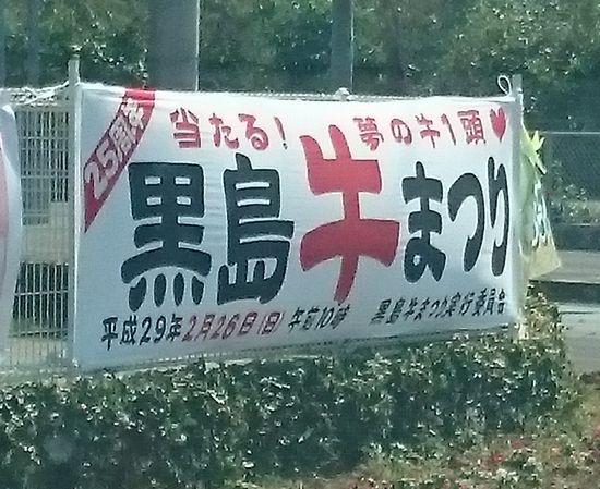 2月26日は、黒島の牛祭りです