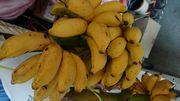 さぁバナナ。熟してきました