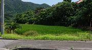 田んぼ。お米が実り始めています。