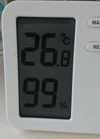湿度99%!