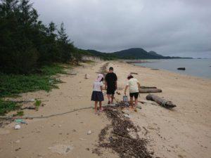 雨の合間を縫ってビーチコーミング!今日の狙いはモダマ探しです!