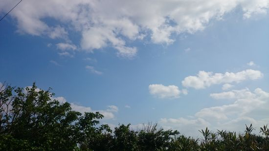 青空広がる良い天気です
