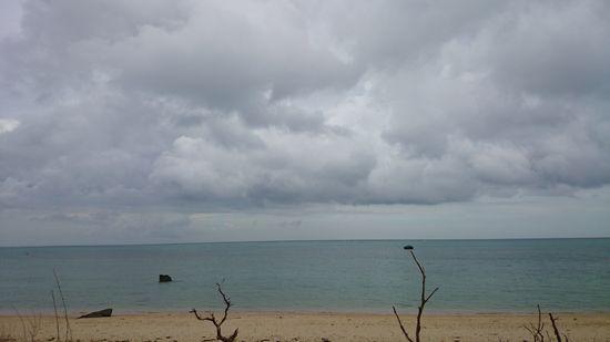 あいにくの曇り模様の一日でした
