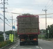 収穫に大忙しのダンプカー