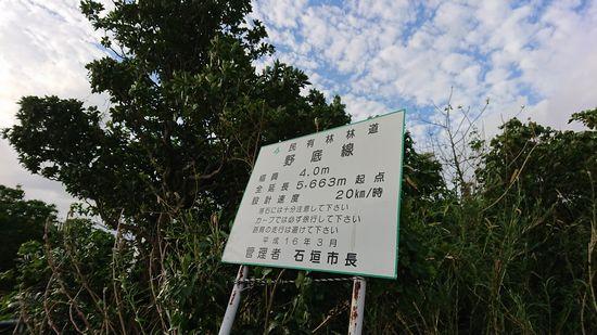 石垣島北部の野底林道