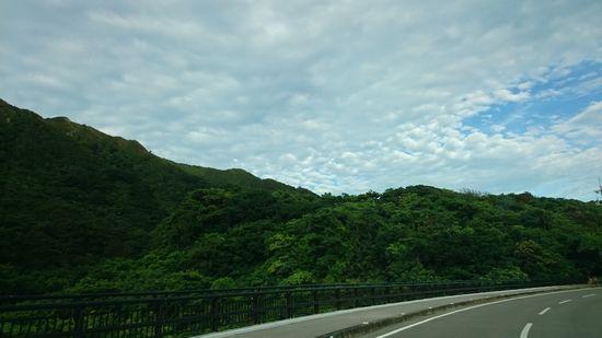山肌は、緑ではなく真緑です。