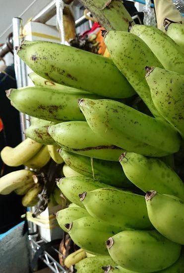 ぷりぷりの島バナナ