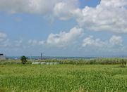 石垣島を観光ドライブ