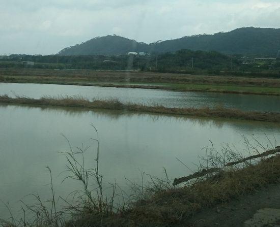 田植え準備が進んでいまる石垣島です。