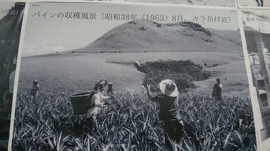 昔の石垣島