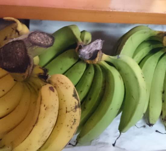 バナナ。3房も。。。