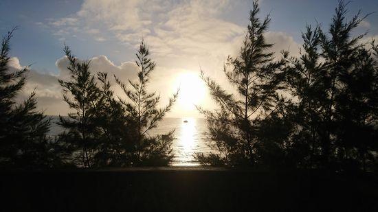 11月の石垣島!コンディションは復活です