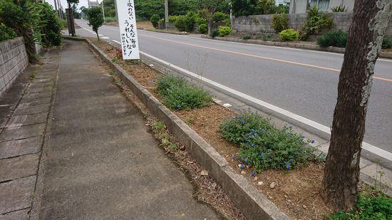 事務所前の歩道スペース