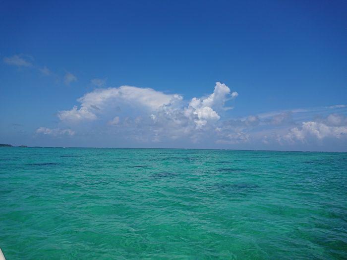 穏やかな海に夏雲です