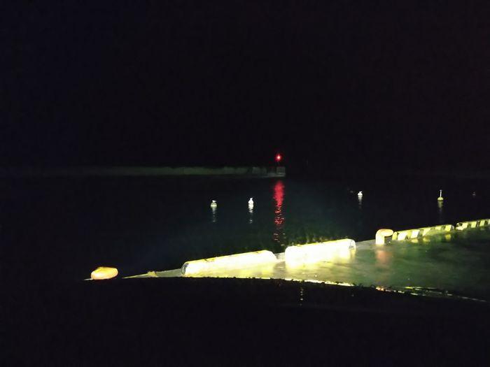 夜の港、ブイに何者か