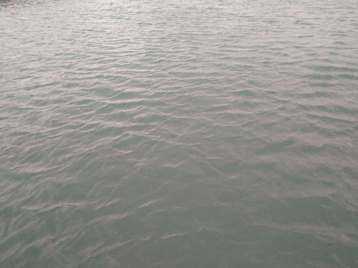 水面を見ていると、わかるでしょうか