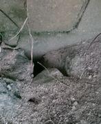 歩道に穴が空いています。
