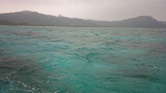 曇り。途中からは雨の一日でしたっ!
