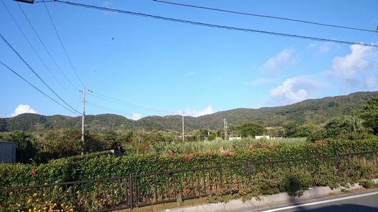 伊野田集落の風景