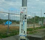もうすぐ石垣島マラソンです