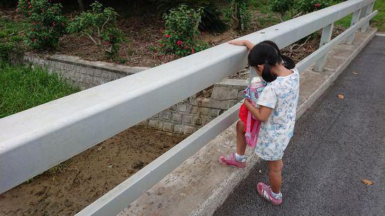 幼稚園の帰り道