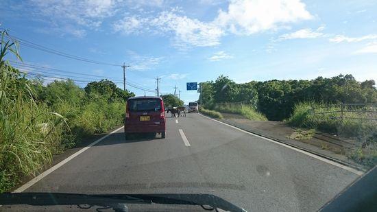 なんだか渋滞気味。