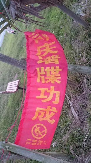 裏には、中国語?