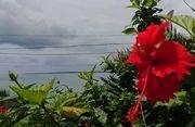 ハイビスカスと竹富島