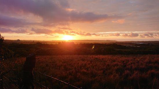 陸から見る朝日