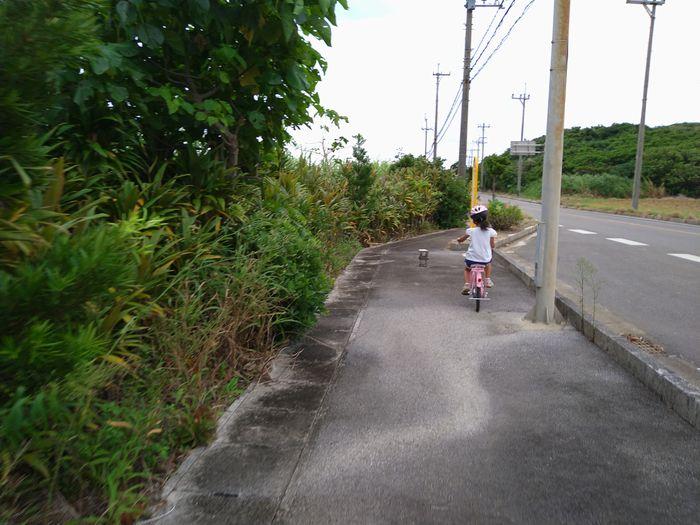 探し物で自転車です。