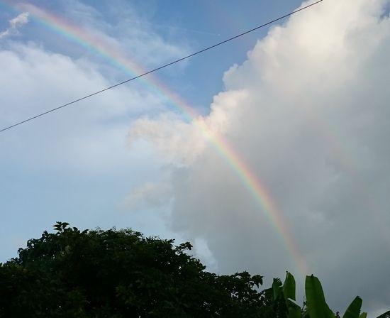 虹が登場です!