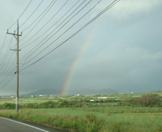 今日は朝から虹を発見です