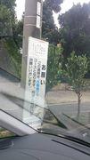 いよいよ一か月を切りました!石垣島マラソン