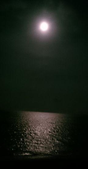 月明かりが明るい大潮の日は。。。