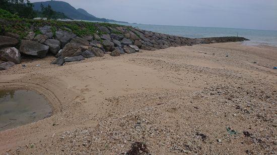 干潮時間のビーチ