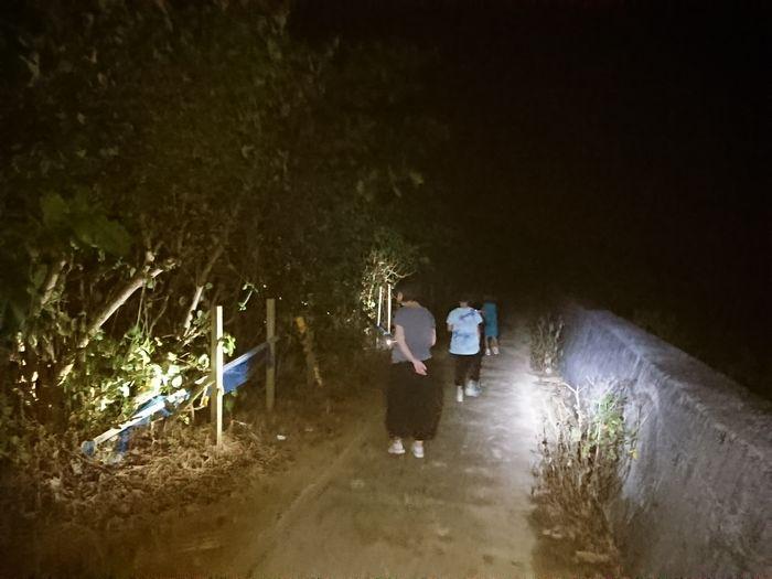 夜道のお散歩