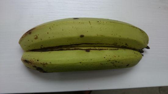 普通のバナナに見えますが、