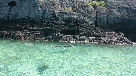 こんな岩の周りを泳いでいます