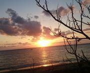 本日も快晴、夏日和の11月です