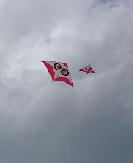 チビすけと凧揚げです